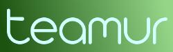 teamur Logo